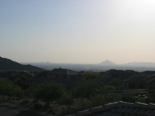 Phoenix at sunset