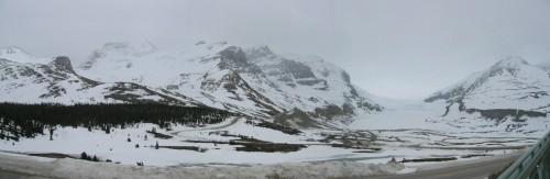 the ice fields