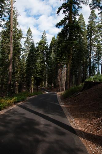 Why I keep returning to Yosemite!