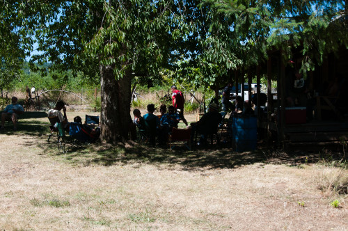 Every one staying in the shade!
